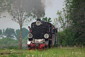 """Gnieźnieńska Kolej Wąskotorowa – """"Majówka z ciuchcią"""" z Px48-1919"""